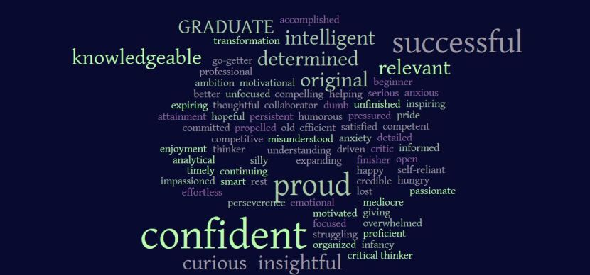 Academic autobiography word cloud